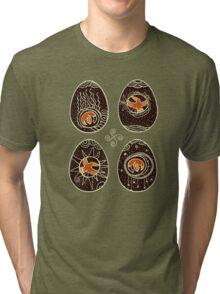 Ravens spring Tri-blend T-Shirt