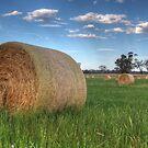 Hay Bales by Joel Bramley