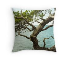 Gotland Throw Pillow