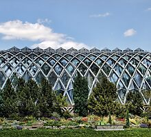 Boettcher Memorial Tropical Conservatory by Jon Burch