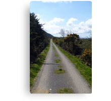 Lonely country track. Canvas Print