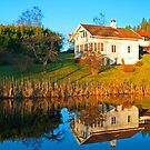 Reflection of a Home by julie08