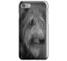 wee scottish hound phone iPhone Case/Skin