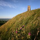 Glastonbury Tor and Thistlle by Nick Pound