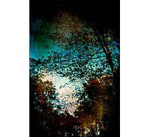 Strange Autumn Photographic Print