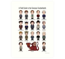 A Field Guide to the Common Cumberbatch (print or poster) Art Print