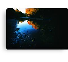 Edge of the River Canvas Print