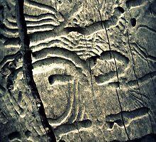Bush Hieroglyphs by Ben Loveday