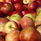 Colorful Apples, Greenmarket, New York Botanical Garden, Bronx, New York by lenspiro