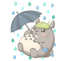 Rainy Day Totoro Photographic Print
