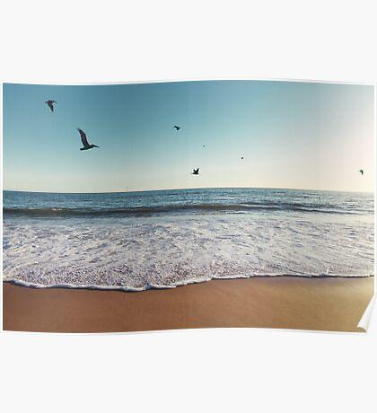 Pelicans Flying Over Ocean Poster