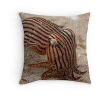 Striped Pyjama Squid - on a night dive, what else? Throw Pillow