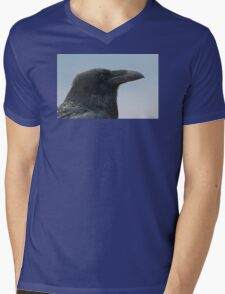 Blue Raven Mens V-Neck T-Shirt