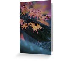 Autumnal hues Greeting Card