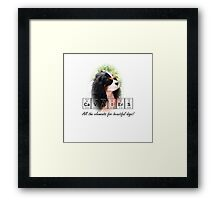 Cavaliers – all the elements of a beautiful dog! Framed Print