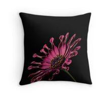 Pink African Daisy Throw Pillow