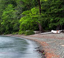 Waves on the beach at Cameron Lake by Michael Russell