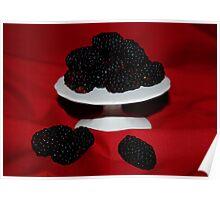 Freshly Picked Blackberries Poster