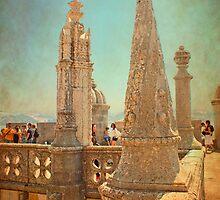 Belém pinacles. by terezadelpilar~ art & architecture