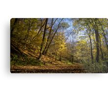 walking on the forest Metal Print