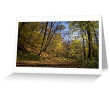 walking on the forest Greeting Card