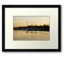 Golden Ripples and Reflections Framed Print