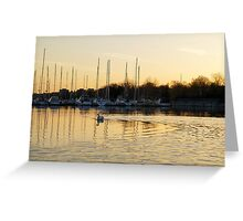 Golden Ripples and Reflections Greeting Card