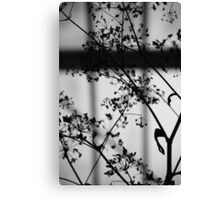 SHADOW POETRY Canvas Print