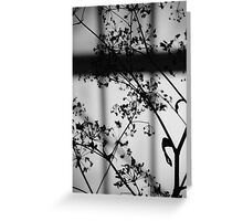 SHADOW POETRY Greeting Card