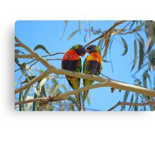 Love Birds... Canvas Print