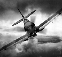 Spitfire by J Biggadike