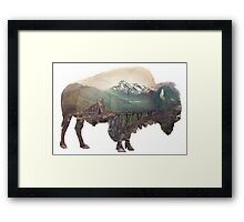 Bison and Independence Mine Framed Print