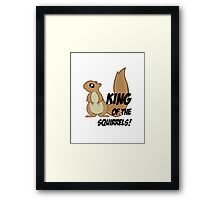 King of the Squirrels! Framed Print