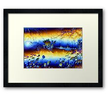 My blue heaven'... Framed Print