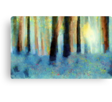 Bluebell Wood'... Canvas Print