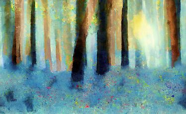 Bluebell Wood'... by Valerie Anne Kelly