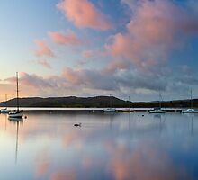 Windermere Pinks by Jeanie