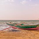Fisherman's Boat beached at an oasis in Egypt by Michael Brewer