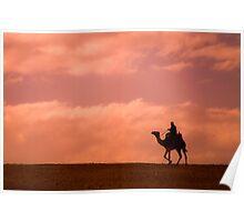 Sunset Camel Rider Poster