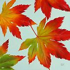 Autumn Leaves by Lynne  M Kirby BA(Hons)