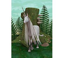 White Unicorn Photographic Print