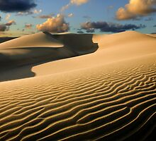 Dunes of Maspalomas by Lex Thoonen