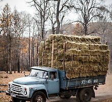 Transporting Hay in Mongolia by raredevice