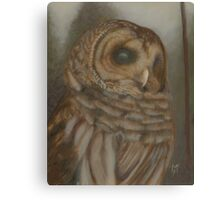 Barry the Barred Owl in the Fog Canvas Print
