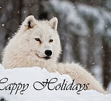 Arctic Wolf Holidays Card 1 by WolvesOnly