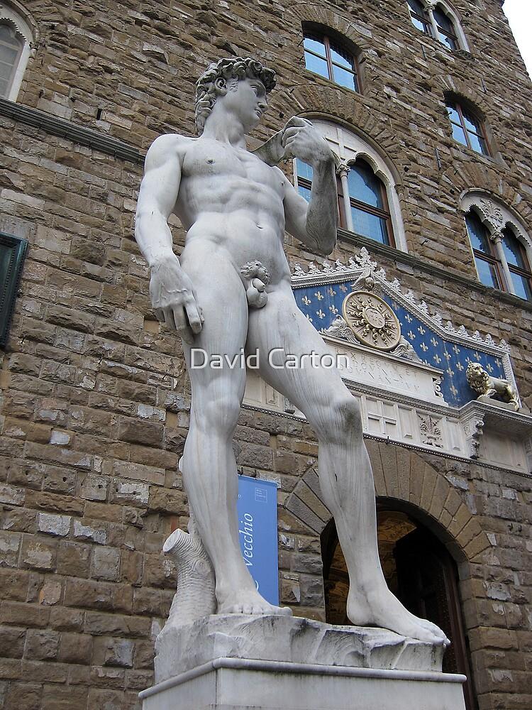 Statue of David Copy, outside the Uffizi, Florence by buttonpresser
