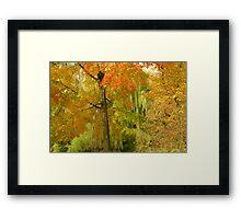 Autumn in Central Park Framed Print