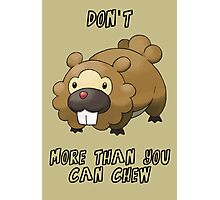 Don't Bidoof More Than You Can Chew Photographic Print