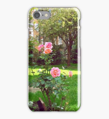 church yard roses iPhone Case/Skin