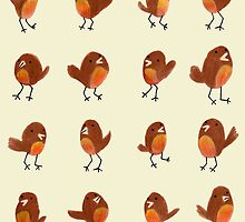 Robins by Sophie Corrigan